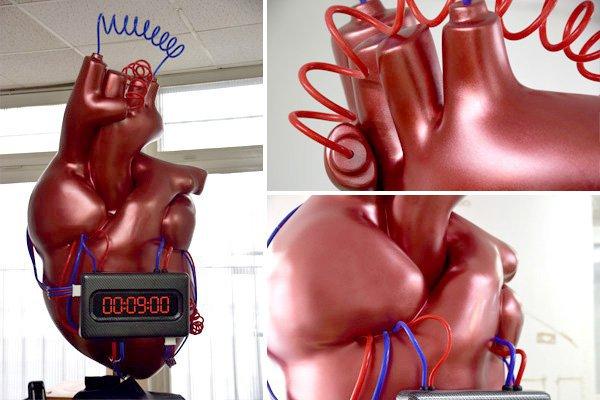 Roche Herzmedikament Modell